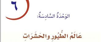 حل مادة لغتي درس عالم الطيور والحشرات صف رابع إبتدائي الفصل الدراسي ثاني Arabic Calligraphy