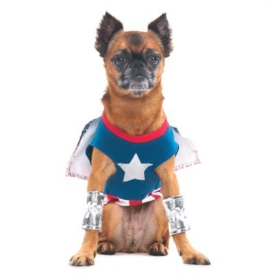 Superdog Costume in Blue/Silver - BedBathandBeyond.com