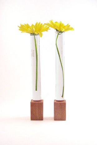 17 Best images about Test Tube Vase on Pinterest | Trips, Flats and Vase