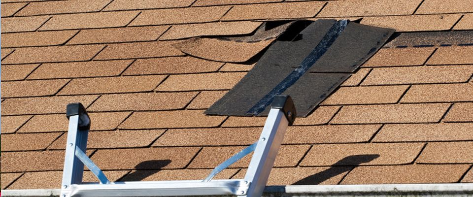Pin by Roof Repair Phoenix on Roofing Leaking roof, Roof