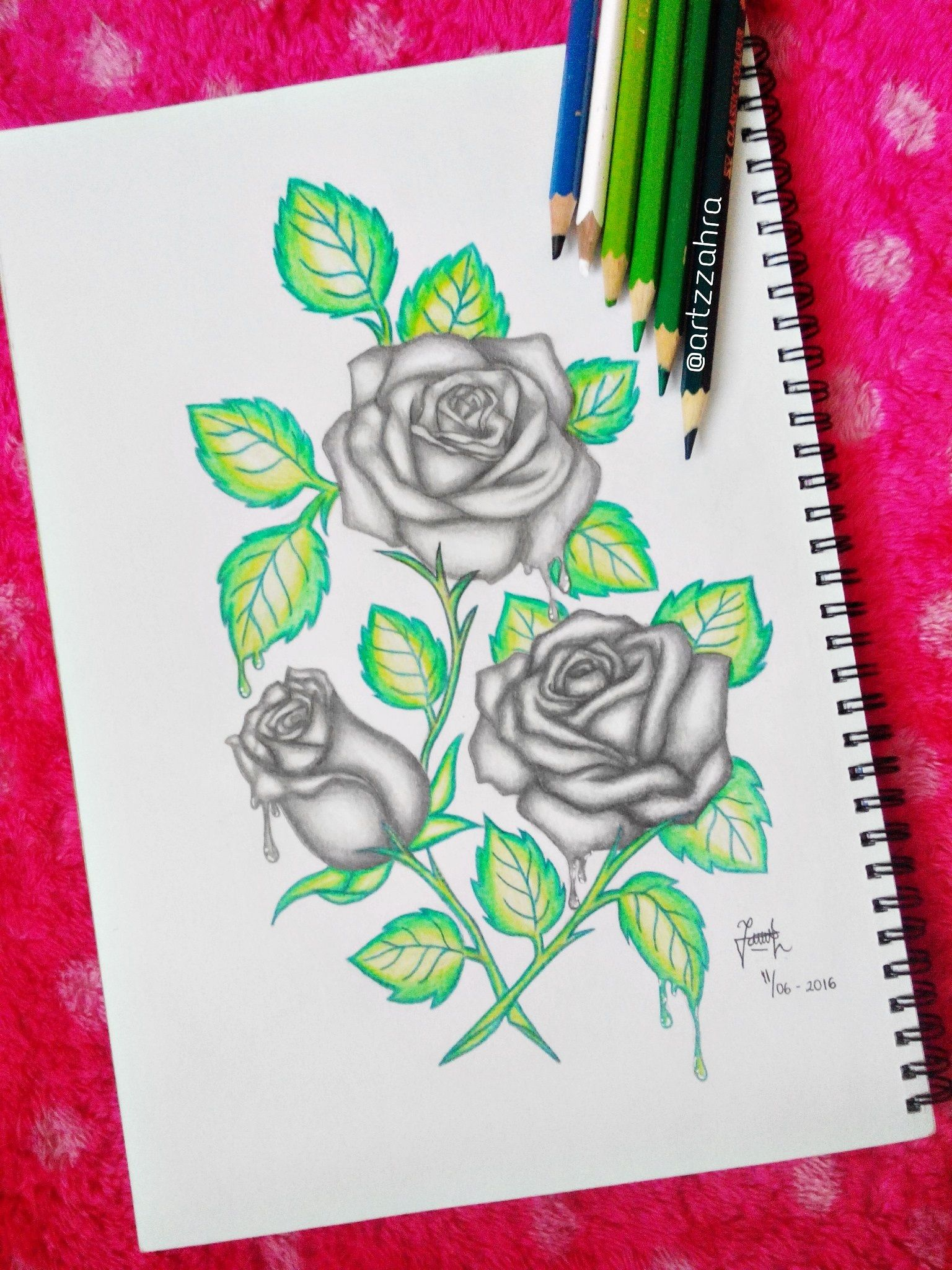 roses drawing done by me  ufe0f u200d follow my instagram to see