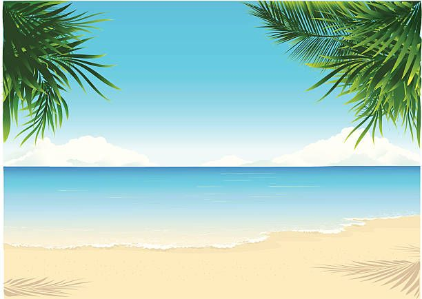 paradise beach vector art illustration animals pinterest free