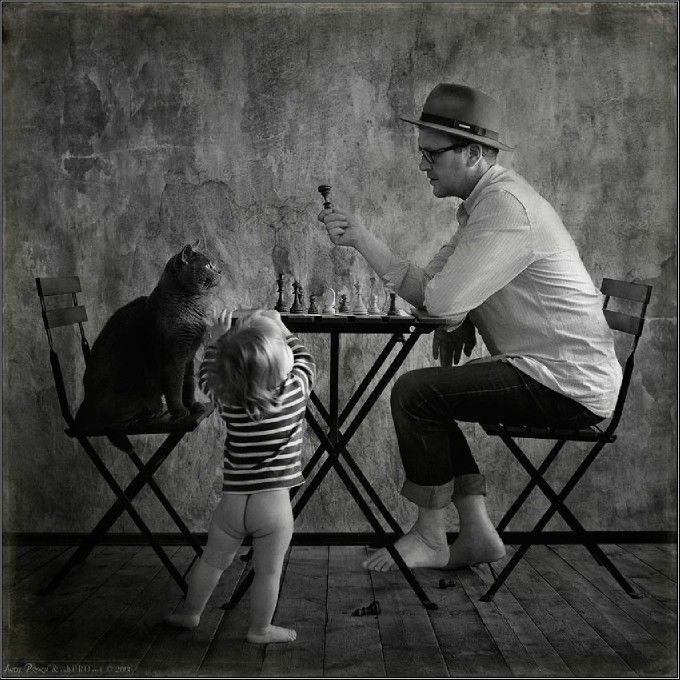 The Chess Players By Andy Prokh Fotografcilik Kedi Canta
