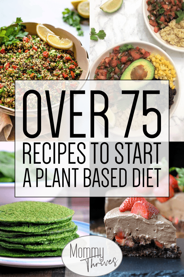 75 + Plant Based Whole Food Recipes – Mommy Thrives