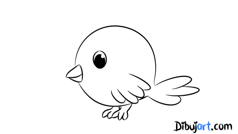 Como Dibujar Un Pajaro Sencilla Y Facil Sketch O Bosquejo Para Colorear Dibujos De Pajaro Dibujos Pajaros