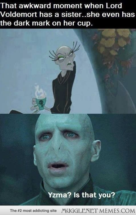 Wait That S The Girl From Emperors New Groove Harry Potter Jokes Harry Potter Memes Hilarious Harry Potter Fandom
