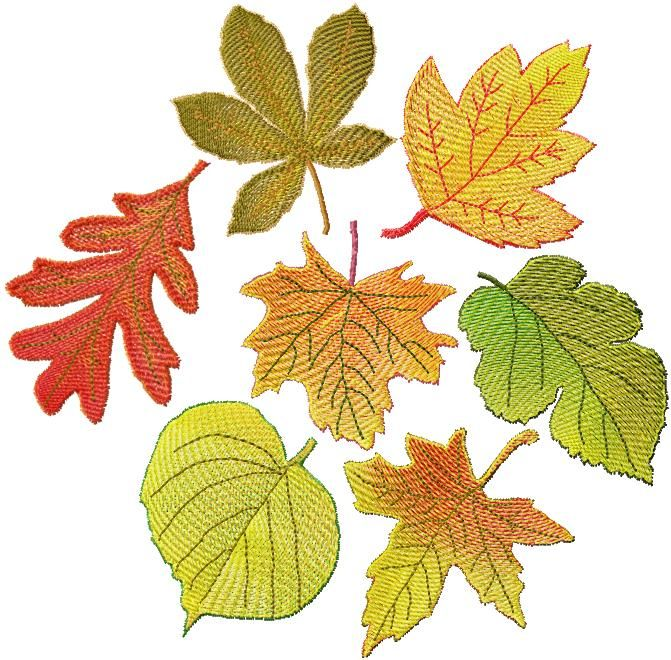 Advanced embroidery designs fsl autumn leaves set