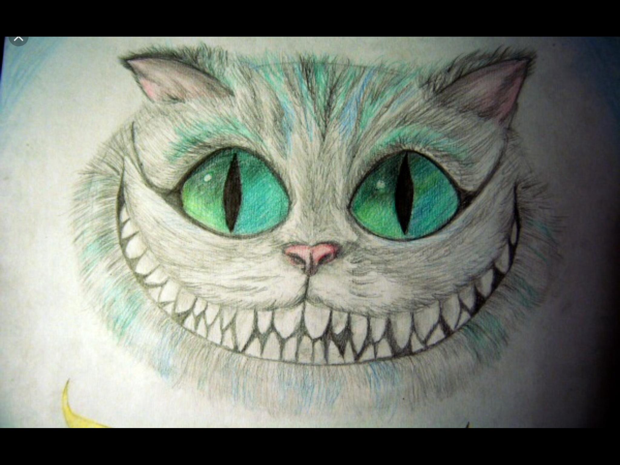 него рисунки чеширский кот простым вопрос стоит