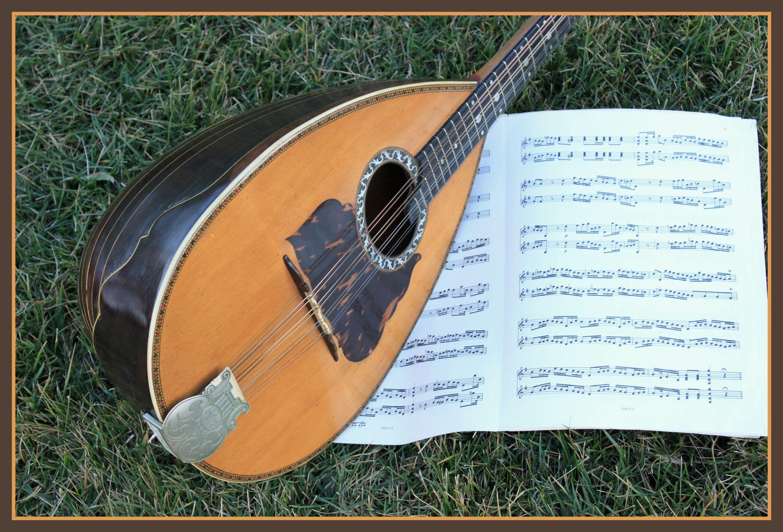 Roundback Mandolin (Mandola) with Music in the Grass.