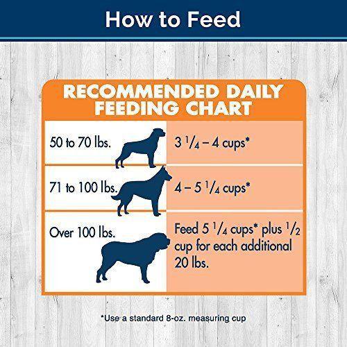 Dog Dry Food Recipes
