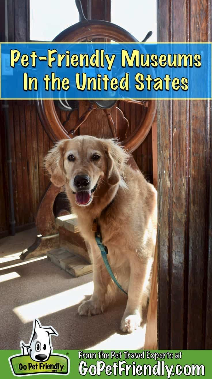 Pet Friendly Museums To Enjoy With Your Travel Buddy in the United States - Go Play! Things to Do On a Pet Friendly Vacation #Buddy #enjoy #Friendly #Museums #Pet #Play #States #Travel #United #Vacation #Cute #CutePets #Pets