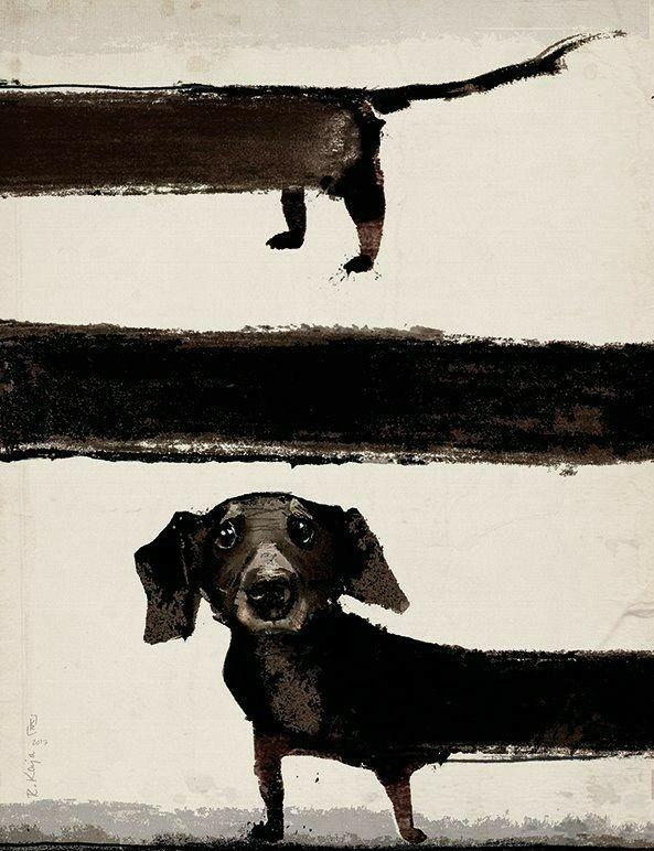 Dachshund Dog Art Dachshund Art Dog Paintings