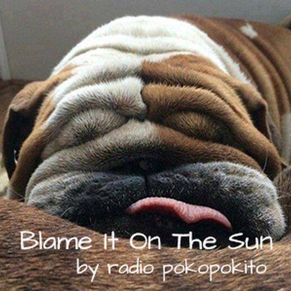"""Check out """"Blame It On The Sun"""" by radio poko pokito on Mixcloud"""