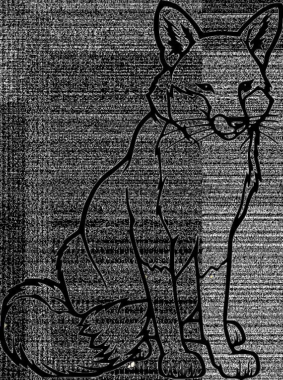 Rev Tegning Google S 248 K Fox Coloring Page Animal