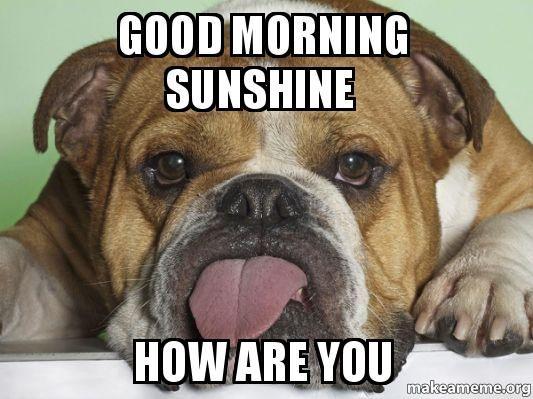 Good Morning Sunshine Meme