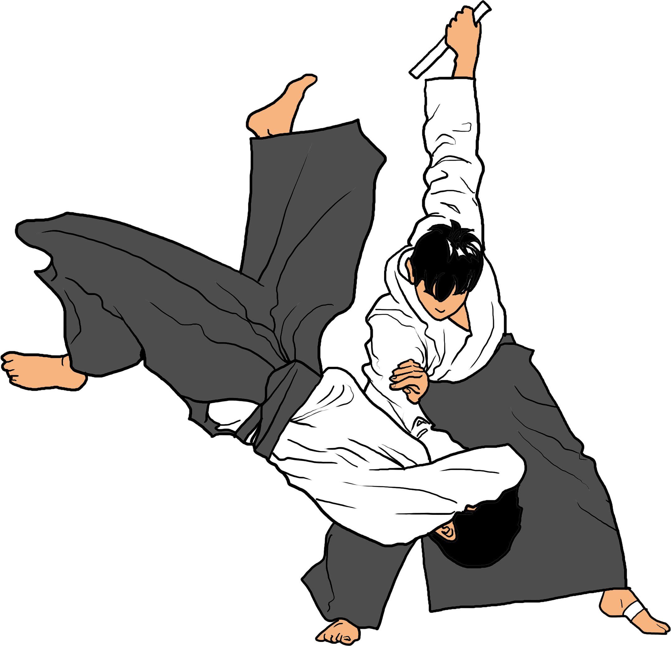 Pin de Guillermo Coronado en AIkido | Artes marciales