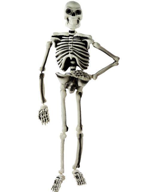 Hanging Plastic Skeleton Party City Plastic Skeleton Party City Halloween Goodies