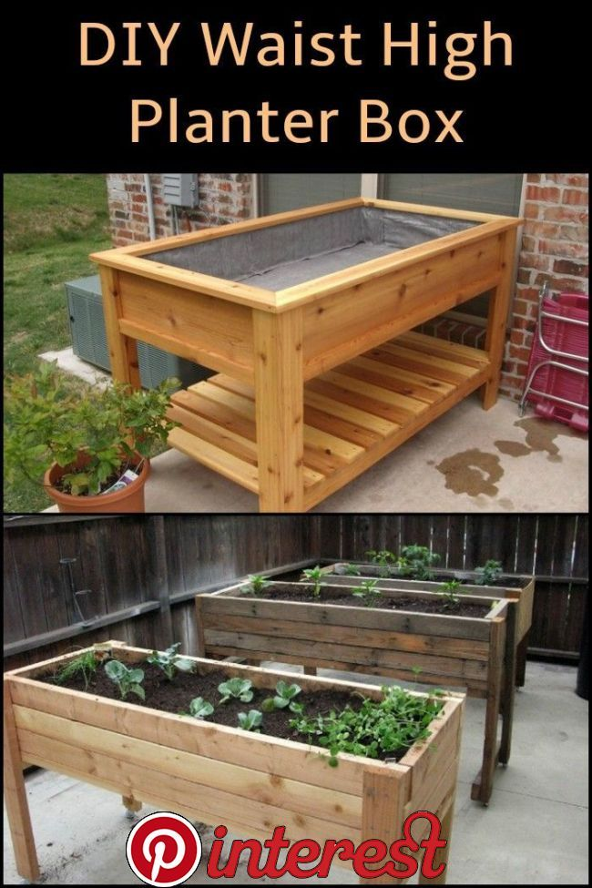 Diy Waist High Planter Box In 2020 Garden Planter Boxes Diy