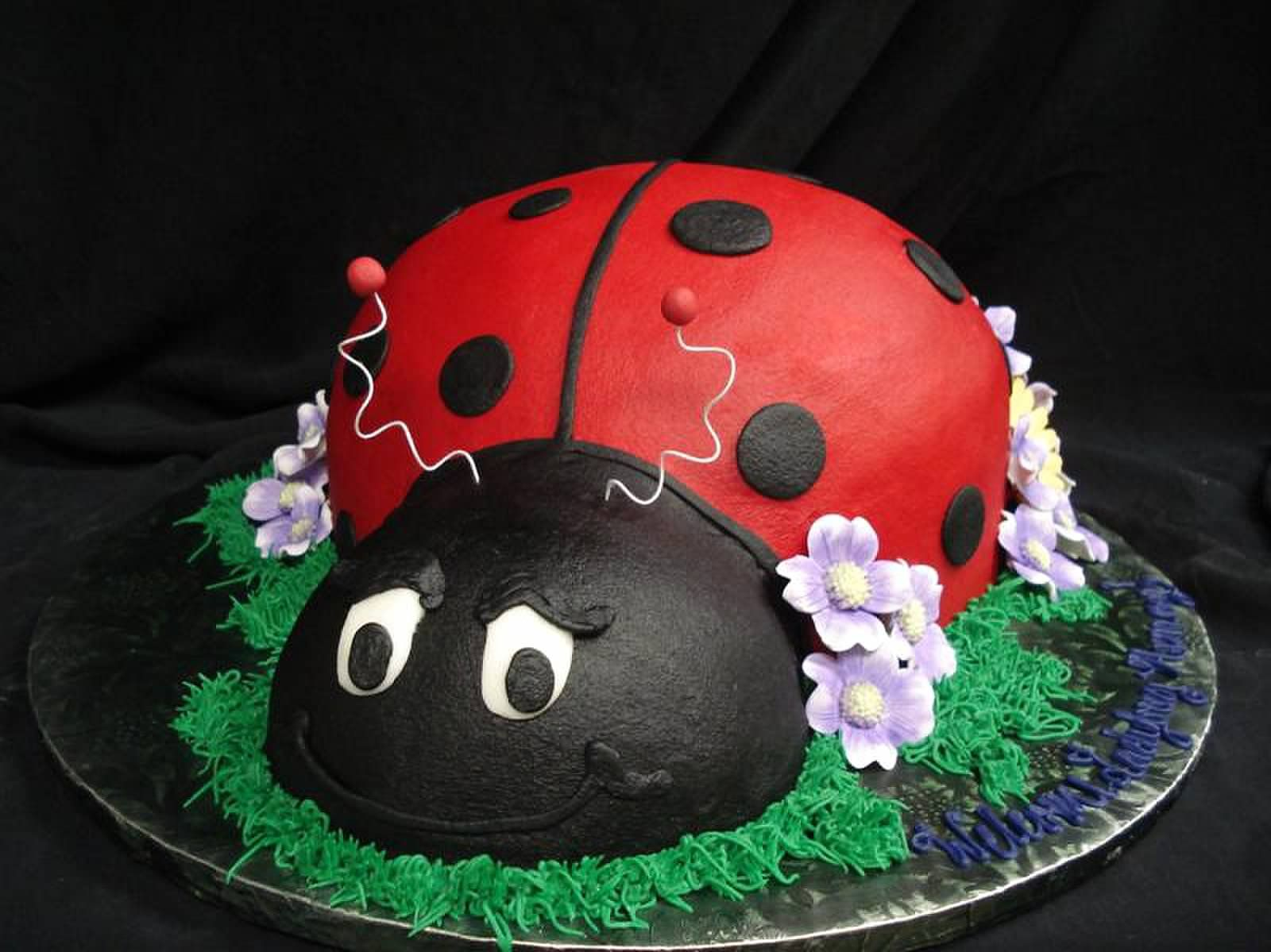 Heres A Ladybug Baby Shower Cake For Your Arriving Little Ladybug