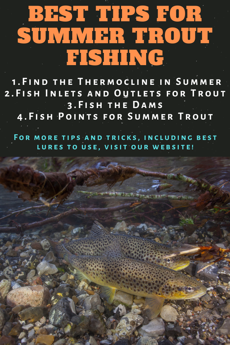 Trout Fishing Tips for Summer  Summer can be a difficult time to catch trout as the water heats up