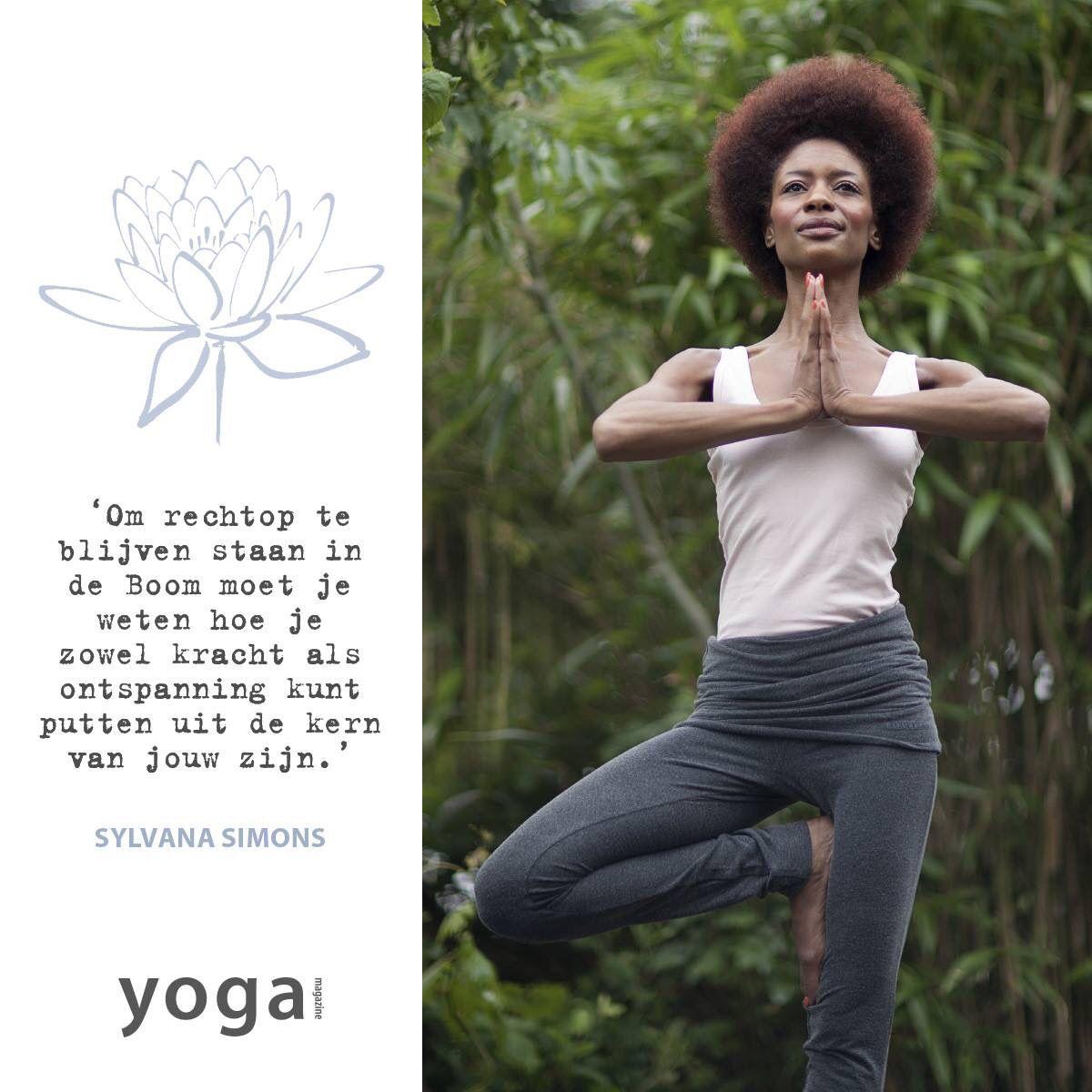 De Boom - yoga