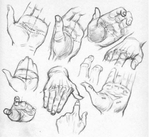99 1 Tecnicas Para Aprender A Dibujar Todo Lo Que Quieras Aprender A Dibujar Manos Dibujo Aprender A Dibujar Caricaturas