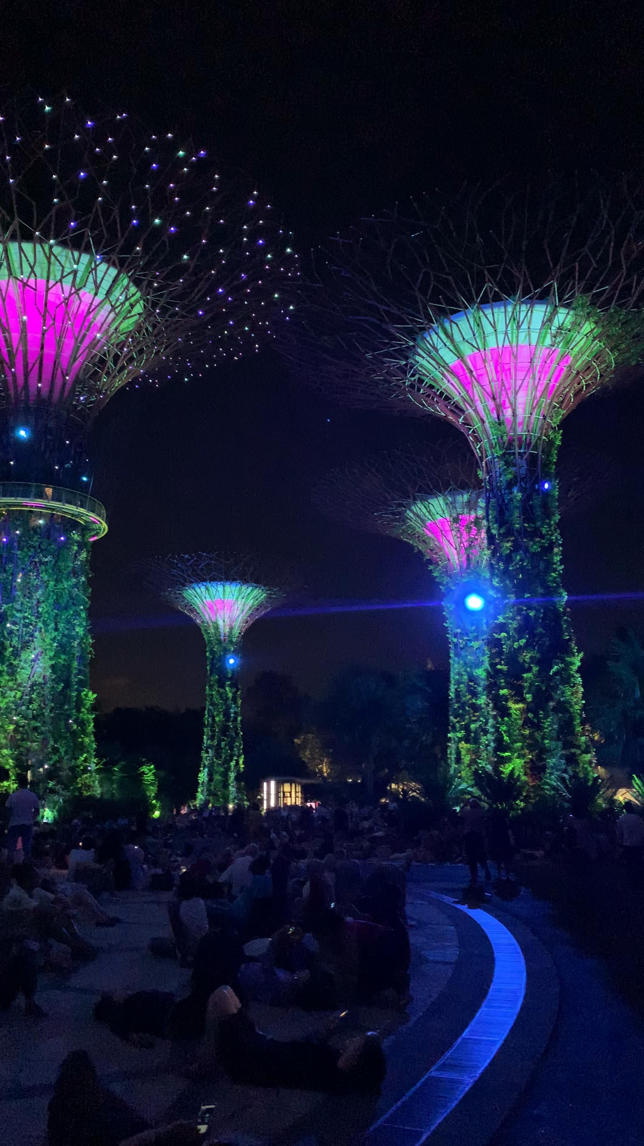 Gardens by the Bay light show in Singapore  #Singapore #garden #gardensbythebay #asia #lightshow #pretty #attractions #musical #colourful #night #best #top #instagrammable