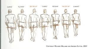 Walk Cycle Back View Croqui Masculino Anatomy Sketch Desenho Da Figura Humana