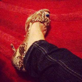 Jimmy Choo snake skin shoes