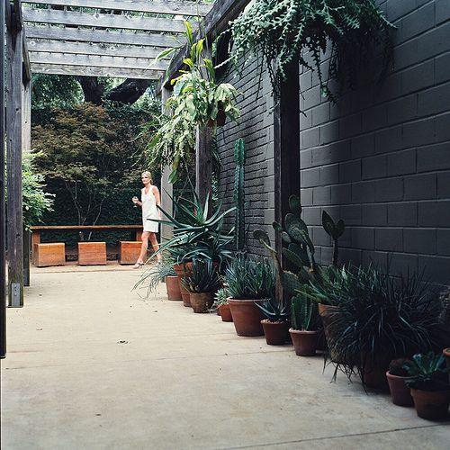 Hotel San Jose Austin Outdoor Hallway Spiration