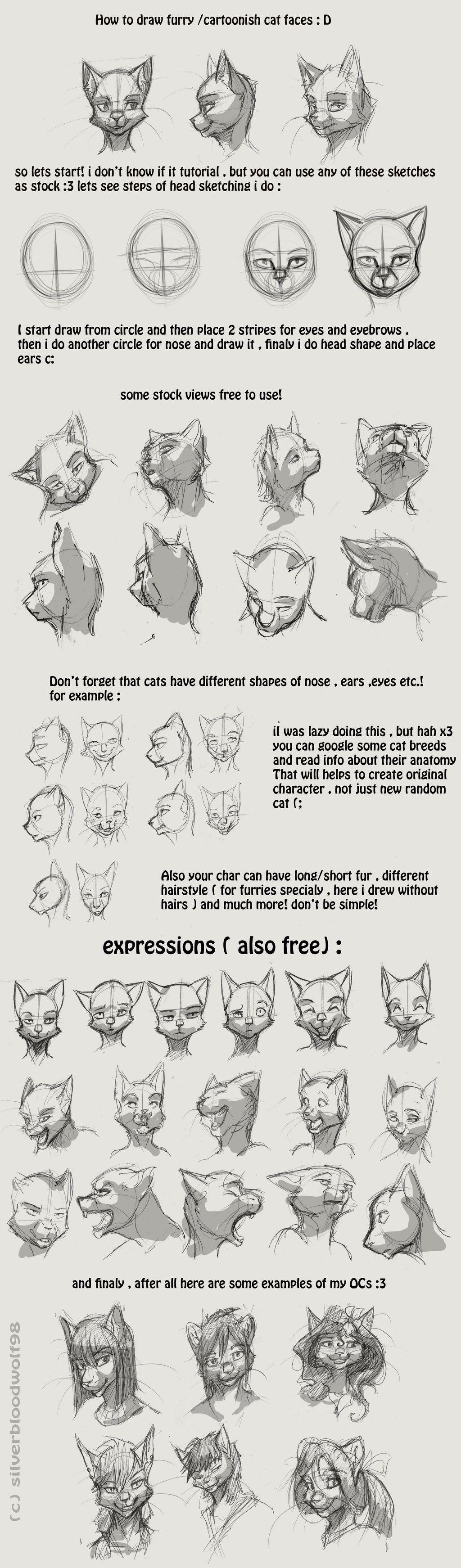 furry / cartoon cat head tutorial by Silverbloodwolf98.deviantart ...