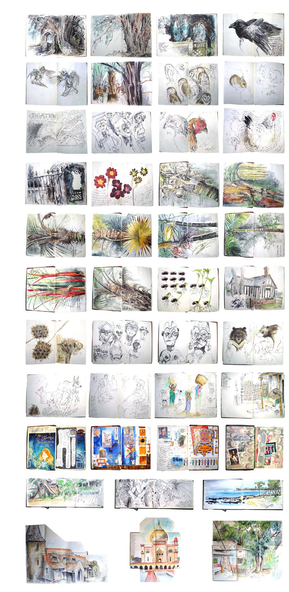 Martin Ursell Illustraties
