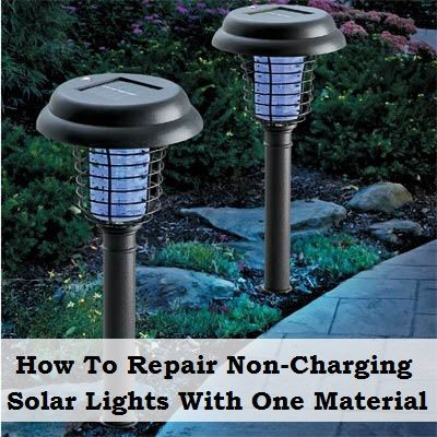 Solar Garden Lights, Nail Polishes, Garden Art, Outdoor Ideas