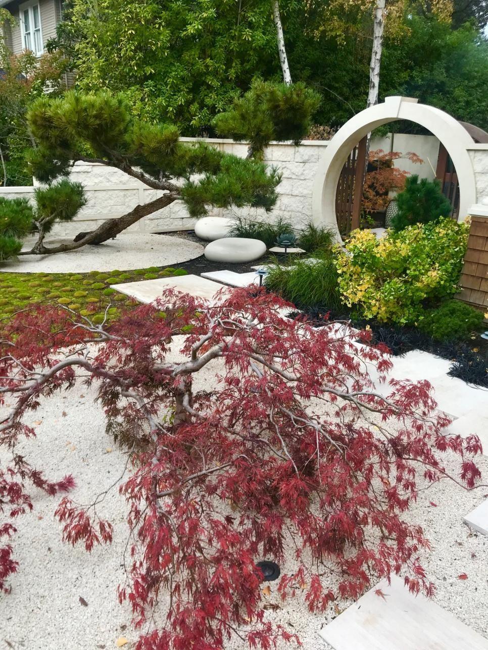 9 Admirable Clever Tips Tropical Garden Ideas Outdoor Showers Garden Ideas Backyard Pots Long Garden Ideas Seasons Modern Garden Ideas How To Build Creative Ga