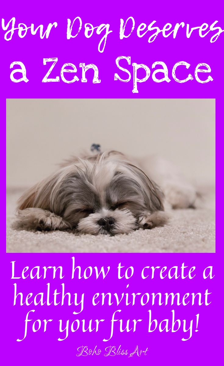Creating A Zen Space For Your Pet Everything Dogs Pinterest