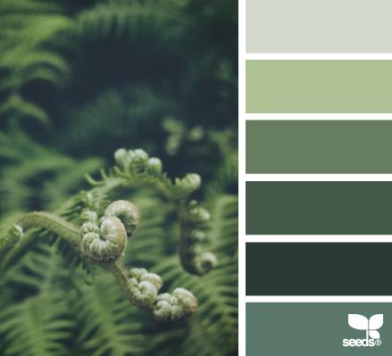 Forest Green Bedroom Color Scheme
