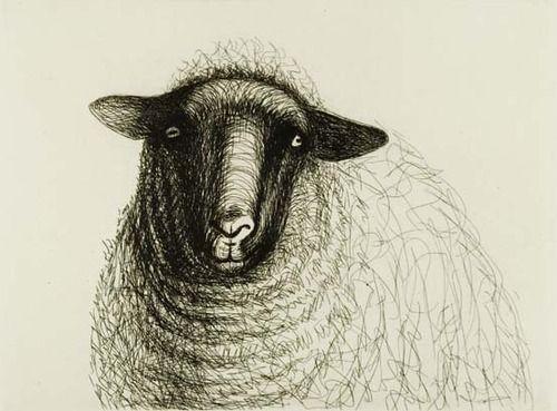 sheep - Henry Moore