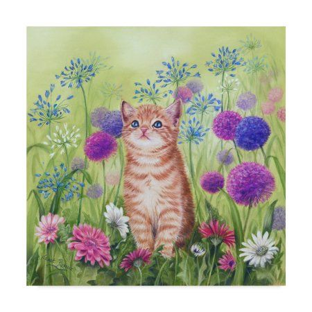 Trademark Fine Art 'Ginger Kitten In Flowers' Canvas Art by Janet Pidoux - Walmart.com
