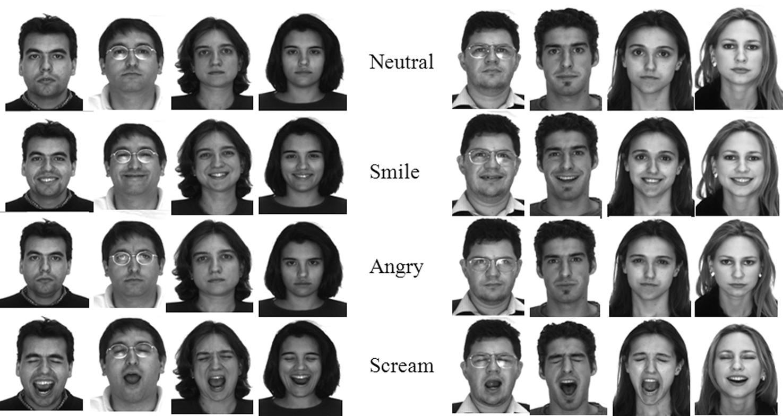 Micro Facial Action