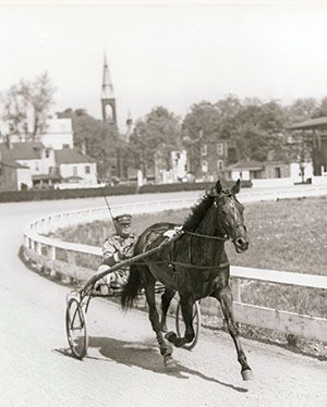 Florican, harness race horse champion