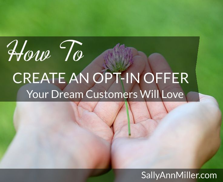Perfect Email Opt-In Offer