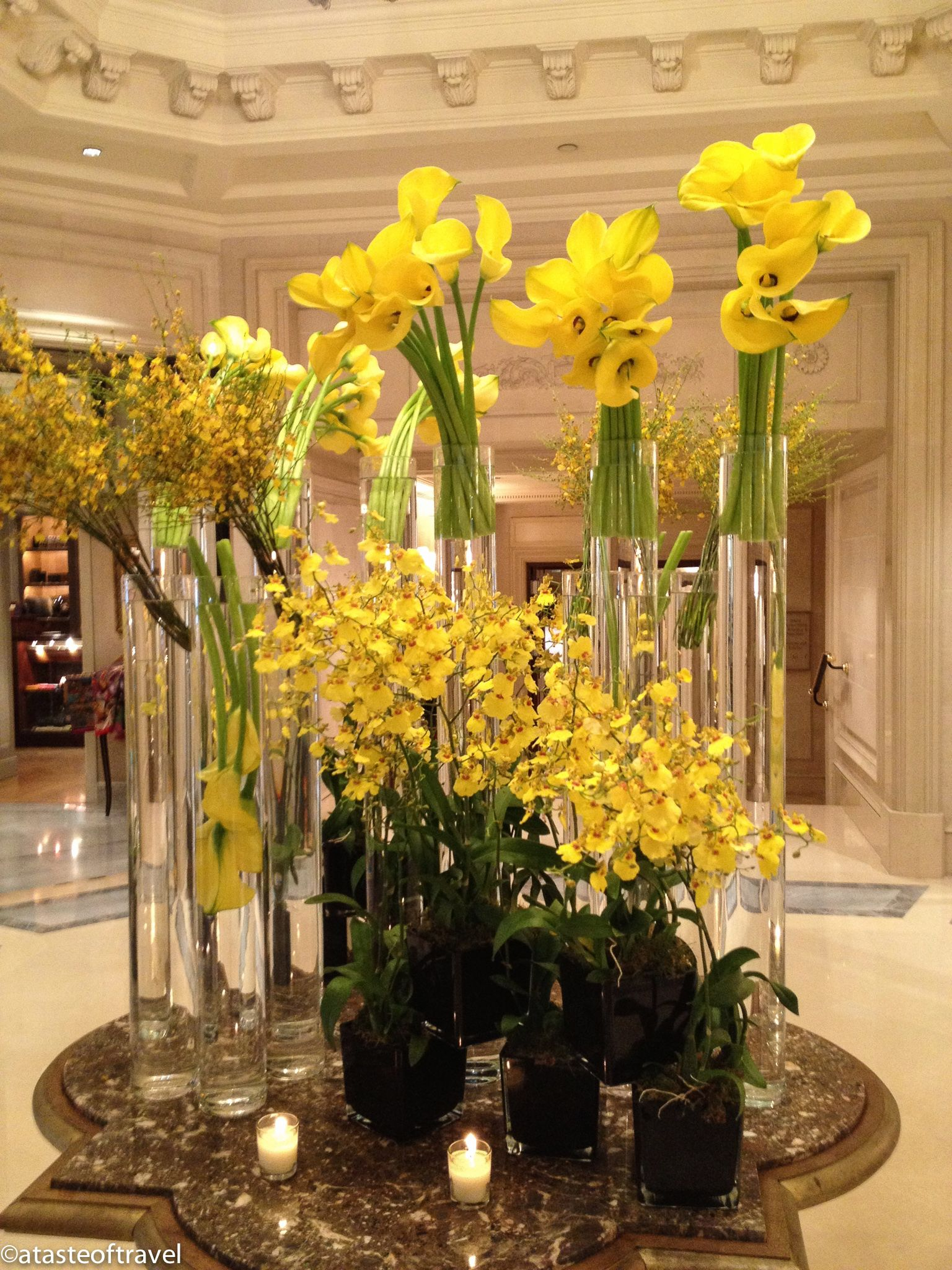 Spring Flowers at the Hotel V in Paris Hotel