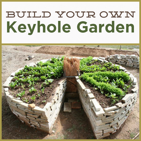Build A Keyhole Garden http://www.growrealfood.com/gardening/how-to-why-you-should-build-a-keyhole-garden/ For more Garden Tips, Homesteading Tips, & More visit: www.GrowREALFood.com