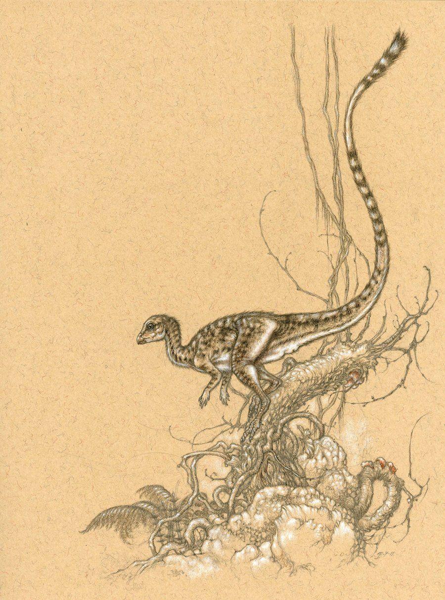 leaellynasaura by himmapaan on deviantart