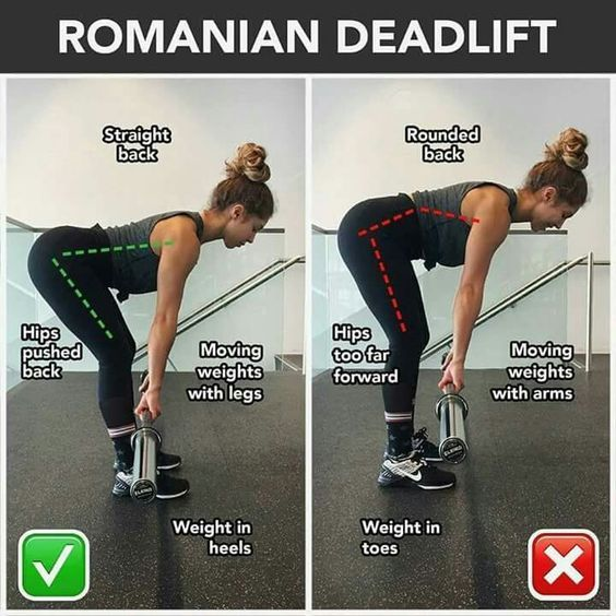 Leg Exercises Amp Workout Squats And Romanian Deadlifts