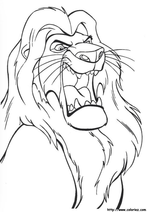 Roi Lion Dessins à Colorier Draw Coloring Pages Horse Coloring