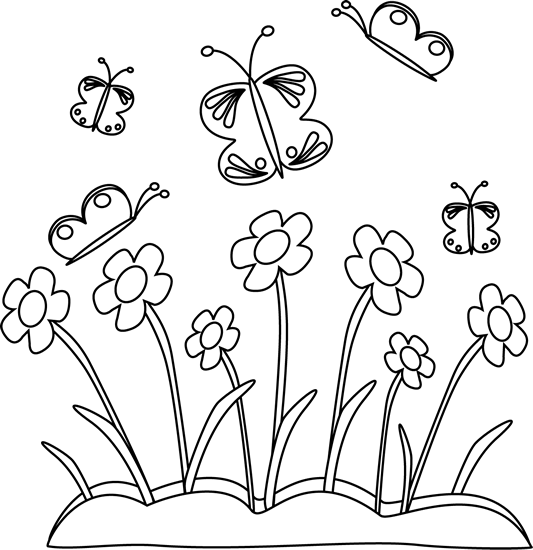 Flower black and white butterfly. Spring flowers butterflies card