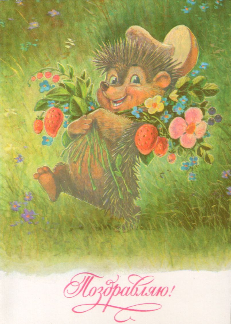 Теплого уютного, советские открытки лето