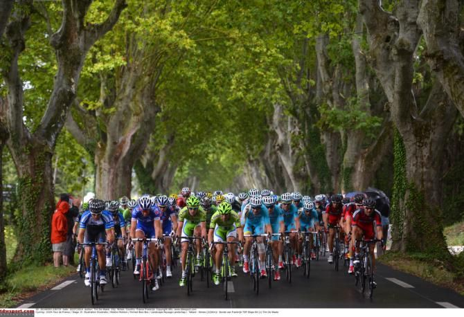 The peloton makes full use of the width of the road - a beautiful sight...