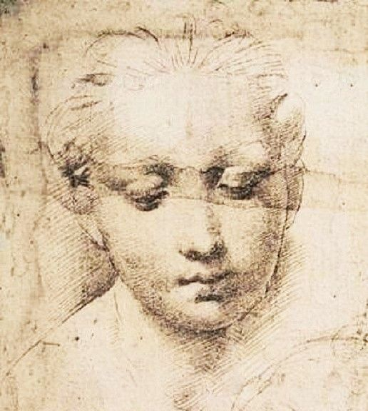 Raphael Madonna And Child I483 I520 Portrait Dessin Fusain